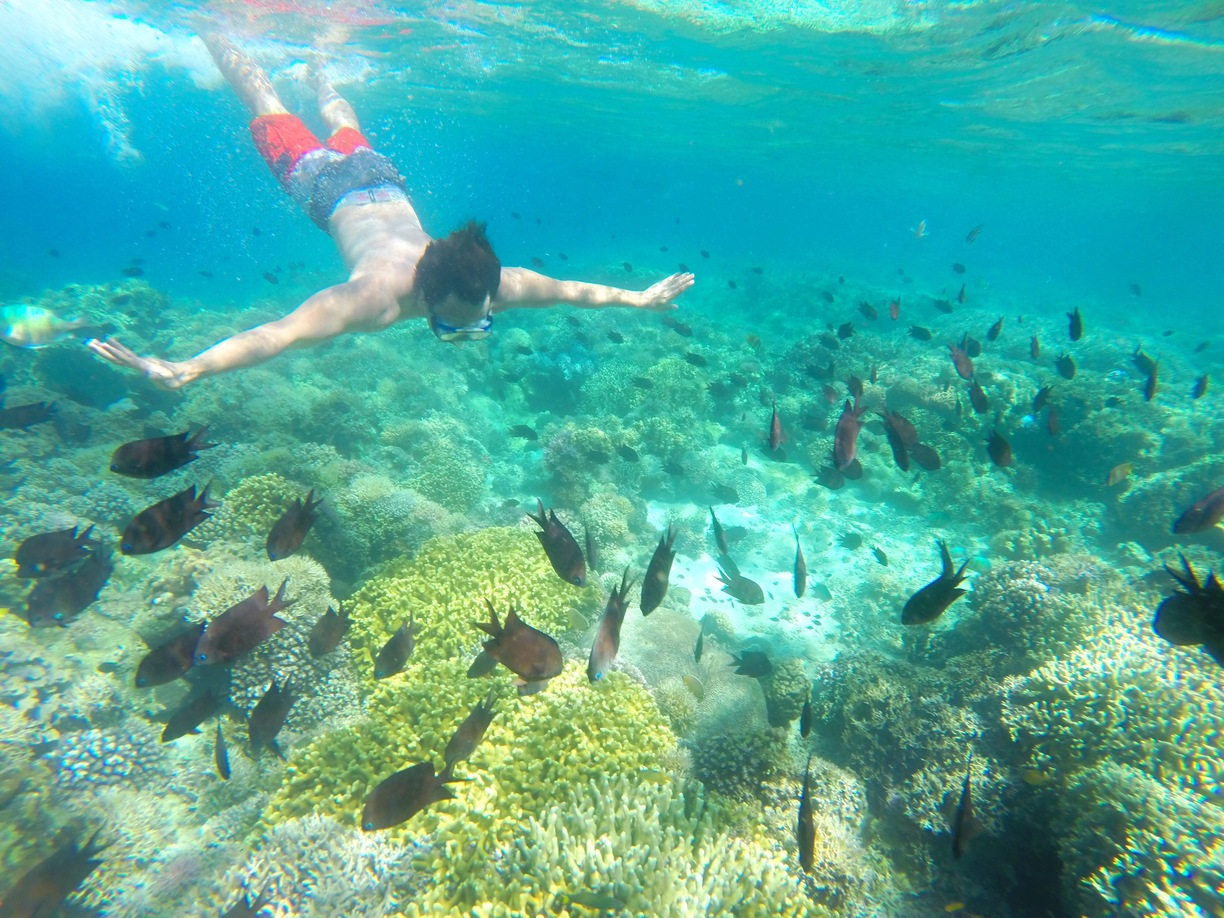 8-Best-Places-to-Go-Snorkeling-That-are-Only-a-Road-Trip-Away_p8b