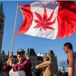 マリファナをカナダが合法化!危険性と常習性は?大麻とは?