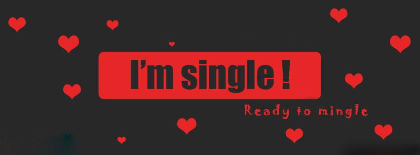 I Am Single Ready To Mingle Facebook Cover | www.pixshark ...