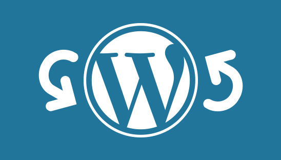wordpress redirect