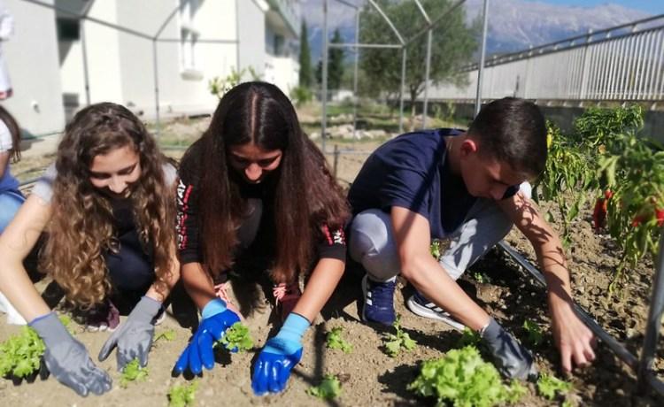 Οικολογικό Project: To σχολικό μας Θερμοκήπιο