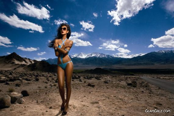 Click to Enlarge - Kingfisher 2009 Exclusive Calendar