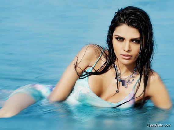 Click to Enlarge - Awesome Sherlyn Chopra Wallpapers