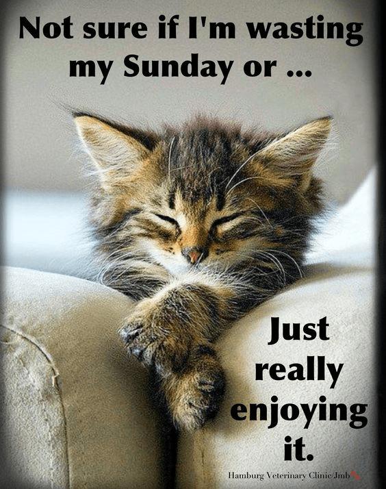 Sunday Goals