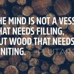 Ignite Your Mind – 905business.com