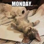 Monday.  No.
