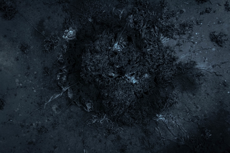 Andre Pagano - Dark Matter - Detail 2