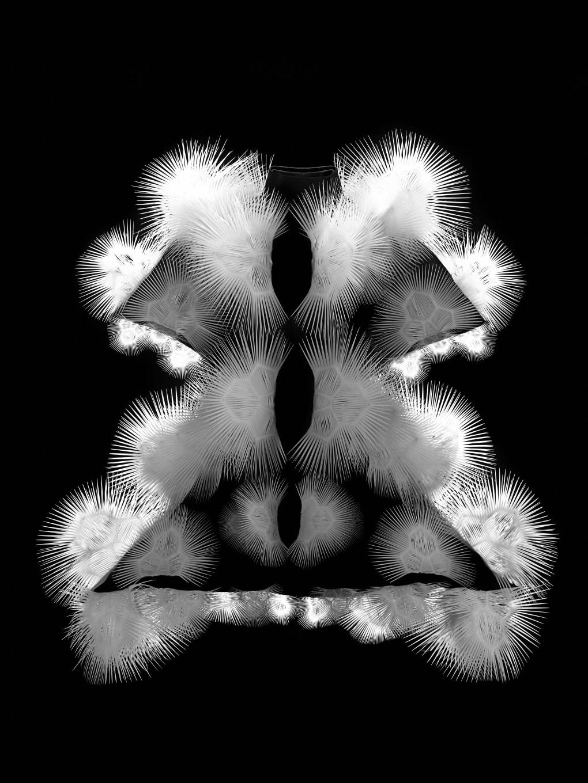 Iris van Herpen (Holanda, nacida en 1984), Voltage, Vestido,Enero 2013. En colaboración con Philip Beesley. Encaje de plástico de poliéster cortado en láser 3D, microfibra. Colección de la diseñadora. Foto por Bart Oomes, No 6 Studios. © Iris van Herpen.