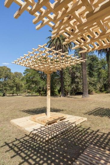 Amancio - Hello Wood Argentina. Foto: Fernando Schapochnik