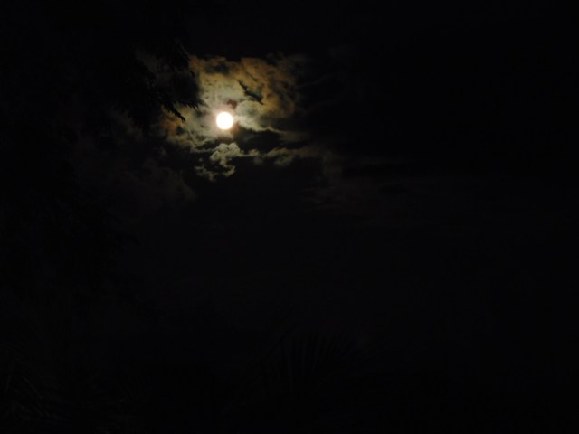 The near full moon - this is taken using the Nikon Coolpix S7000 camera