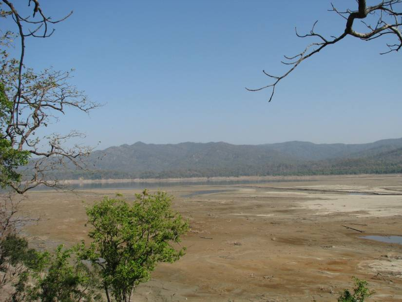 Corbett Tiger Reserve - The river