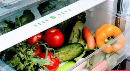 To nie magia, tylko technologia. W TEJ lodówce Amica, warzywa i owoce trzymały świeżość przez 2 tygodnie!