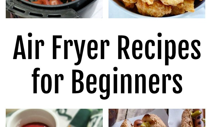 Not sure what an electric air fryer is or what you can cook in it? Get the best air fryer recipes for beginners - along with tips for buying and basic guidelines for using.