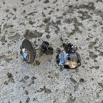 Dots Naked Rhodium Black Studs 10 mm
