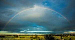 rainbow noah israel full real