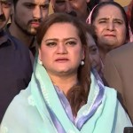 PTI, JI fail to produce evidence in court: Marriyum Aurangzeb