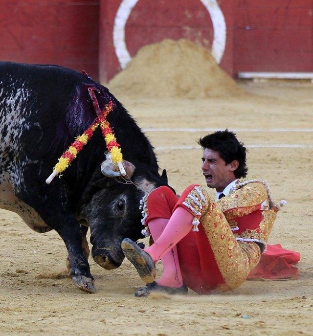 Muere torero español tras ser cornado en el pecho