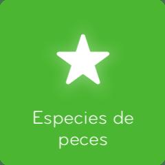 Soluciones 94 Especies de peces