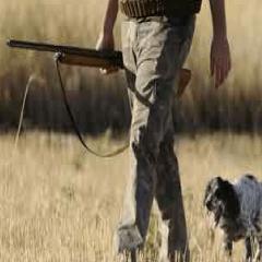 imagen caza 94