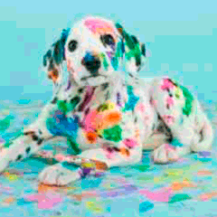 94 dog paint picture