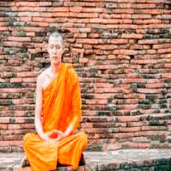 94 monk image