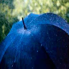 94 umbrella picture
