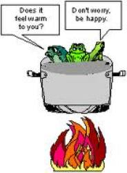 Image result for frog in a boiling pot
