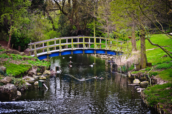 Regents Park Bridge