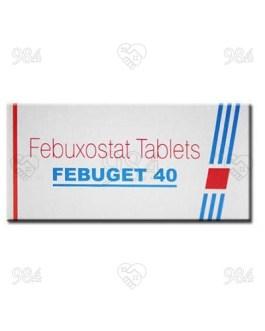Febuget 40mg 100 Tablets, Sun