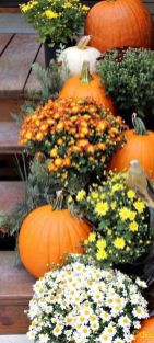 Easy But Inspiring Outdoor Fall Decoration Ideas 64