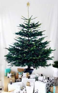Space Saving Christmas Tree Ideas Suitable For Small Rooms 32
