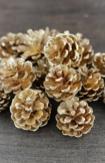 Inspiring Pine Cones Christmas Decoration Ideas 27