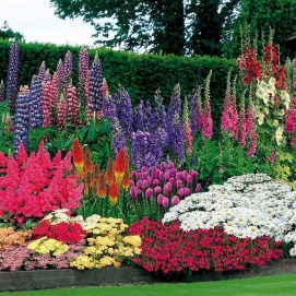 Cute Flower Garden Ideas26