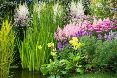 Inspiring Planting Combination Ideas For Your Garden 37