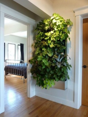 Stylish Vertical Garden Ideas For House29