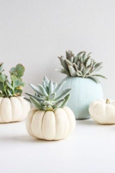 Popular Pumpkin Decor Ideas15
