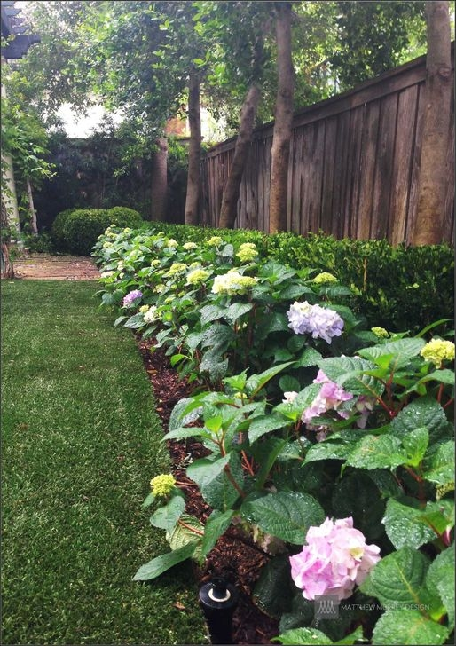 Gorgeous Landscaping Design Ideas For Beginners 22