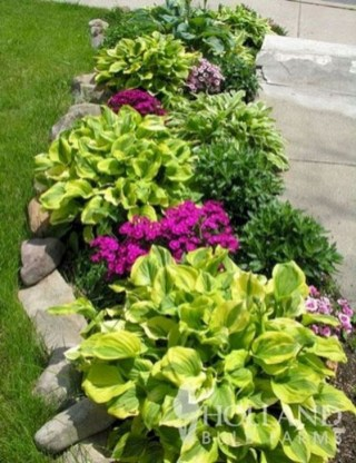 Unusual Front Yard Landscaping Design Ideas That Looks Great 19