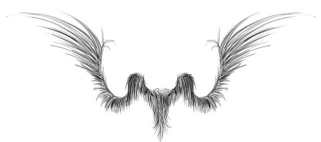 spread_wings