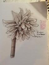 Plant marker sketch