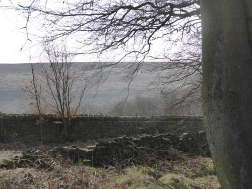 flat hillside opposite