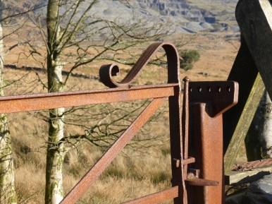 iron gate detail