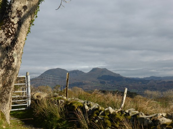 view of Moelwyns across fence