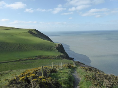 green field to cliff edge - long view