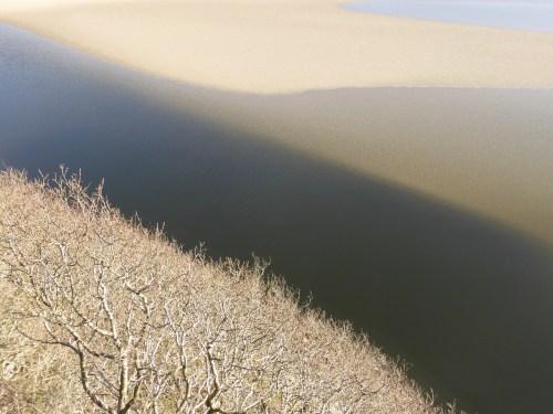 patterns of trees, sandbank and water