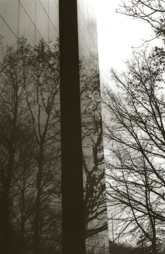 trees reflected in glass office tower