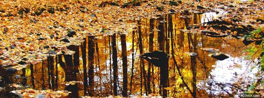 Autumn Leaves And Rain Photo Facebook Cover