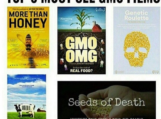 Are you Toxic? Join the 9 day detox | #nogmo #gmo #monsato #organicfood  Are you toxic? Take the Quiz ->