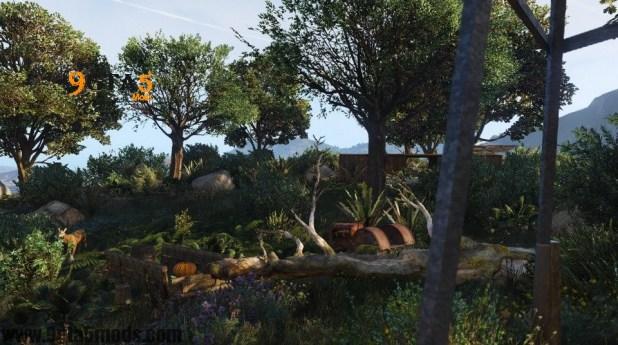 Nature Island Event