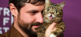 Adopt A Less Adoptable Pet Week Meet 9 Cats Who Found Amazing Homes [VIDEOS]